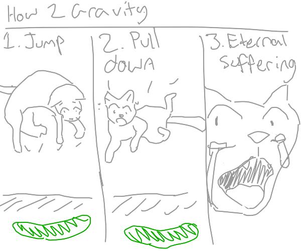 Cat demonstrates gravity