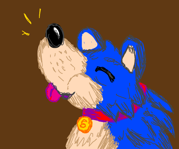 Sonic the Dog