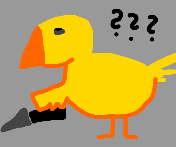 why does a duck have a knife