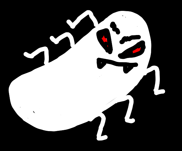 White evil insect bean staring at you
