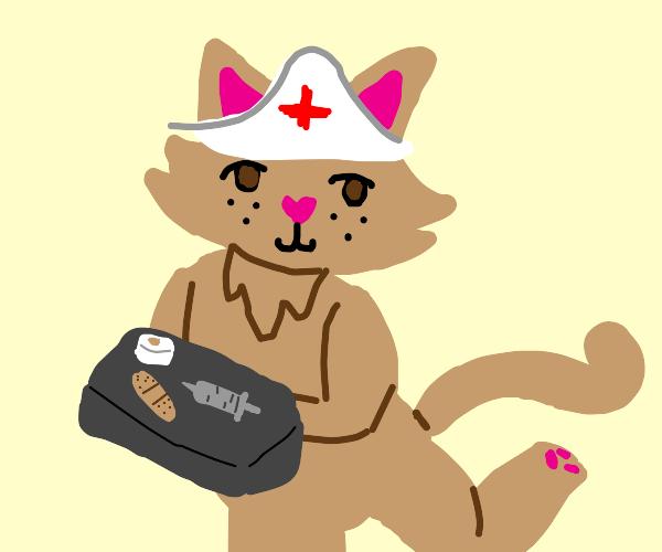 A cat nurse
