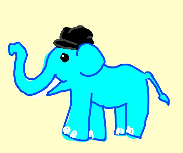An elephant with a weird hat