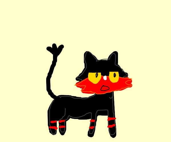 The alolan cat pokemon named litten.? I think
