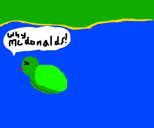 turtle dies coz of the beauty of mcdonalds