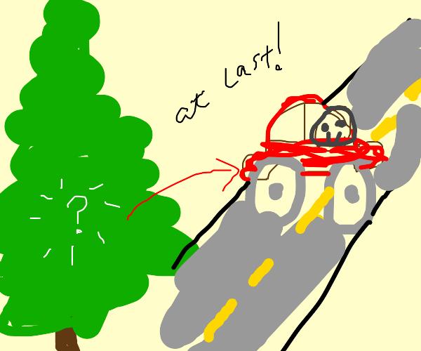 I drive a car. It's no longer in a tree