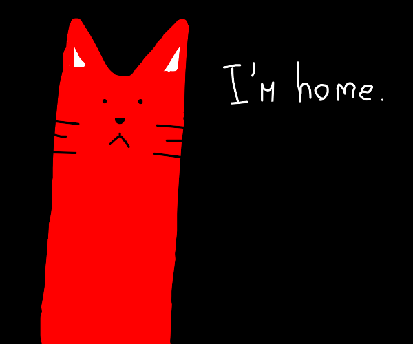 Red cat is home