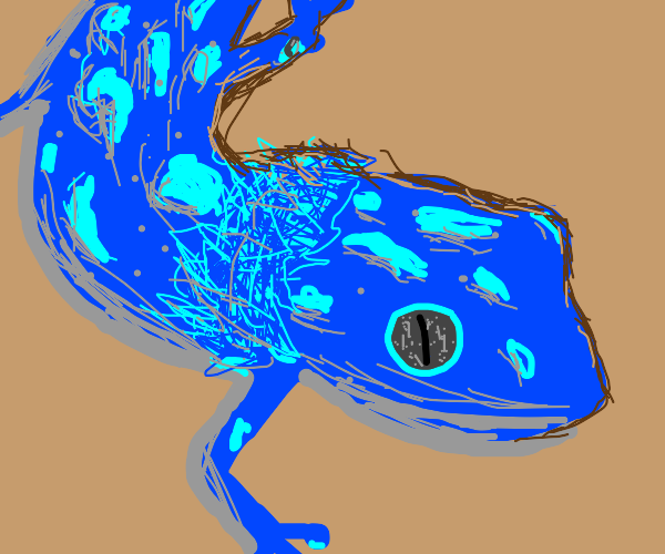 blue gecko with poofy neck