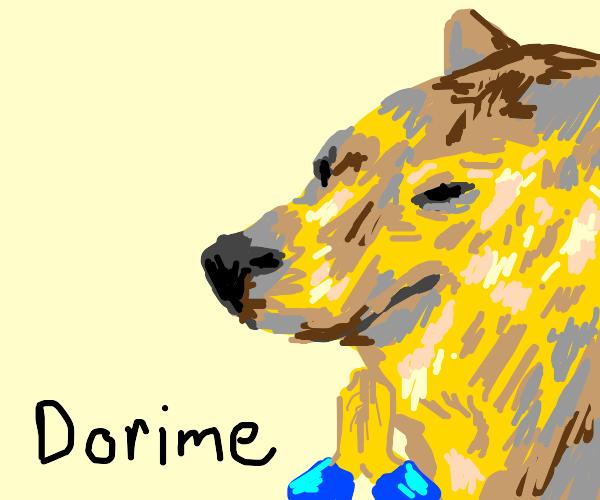 Dorime Cheems