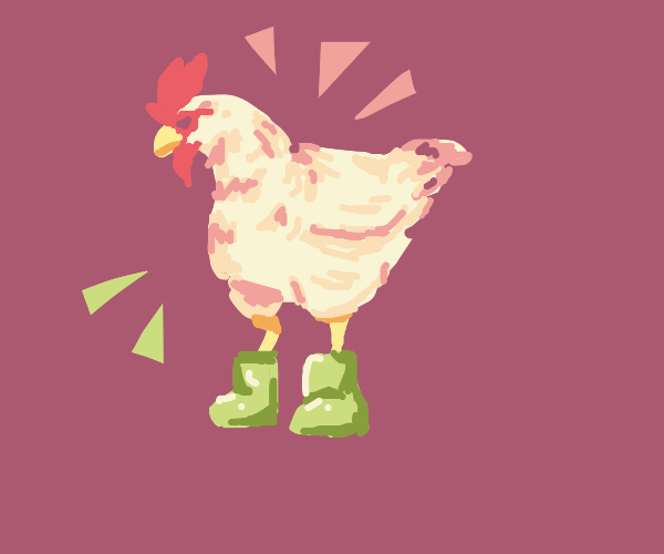 A chicken wearing boots
