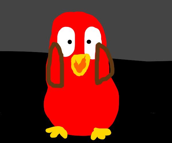 Surprised red penguin