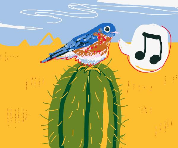 Blue bird on a cactus plant
