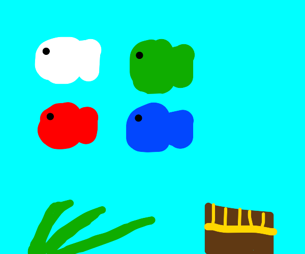 White fish, green fish, red fish, blue fish
