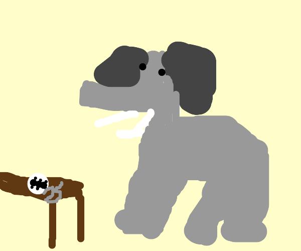 Elephant eats ant