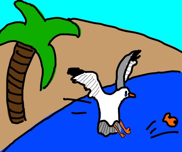 Sad bird can't catch a fish