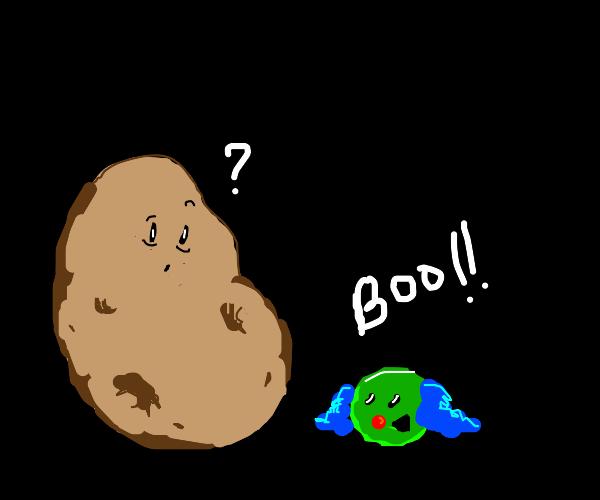 Clown pea pranks potato