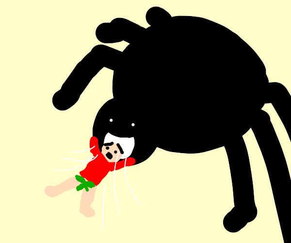 tarantula eats pantless man