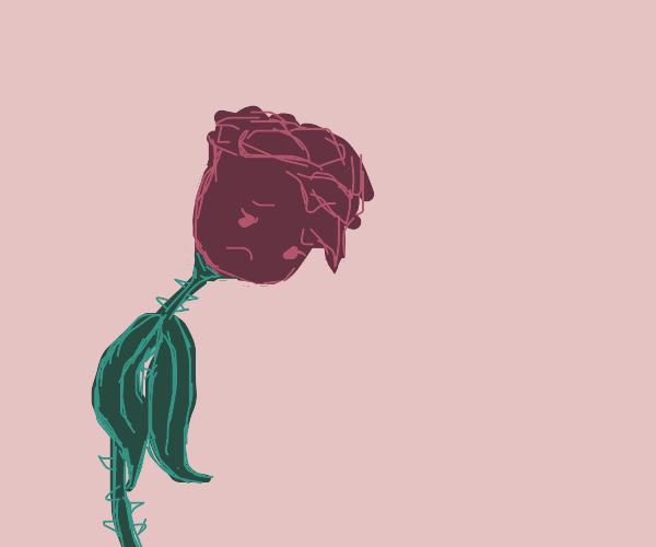 Depressed flower :(