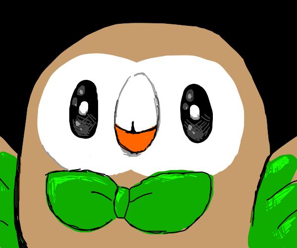 Rowlet from Pokemon