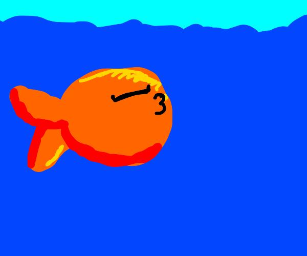 Fish sleeps in the ocean