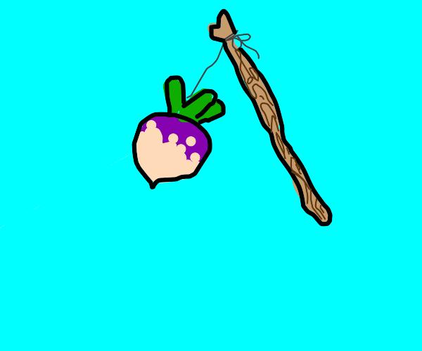 turnip and stick