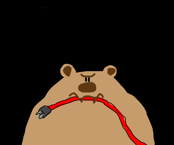 ANGRY BEAR EATING A WIRE