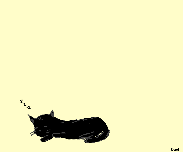 A black cat is sleeping