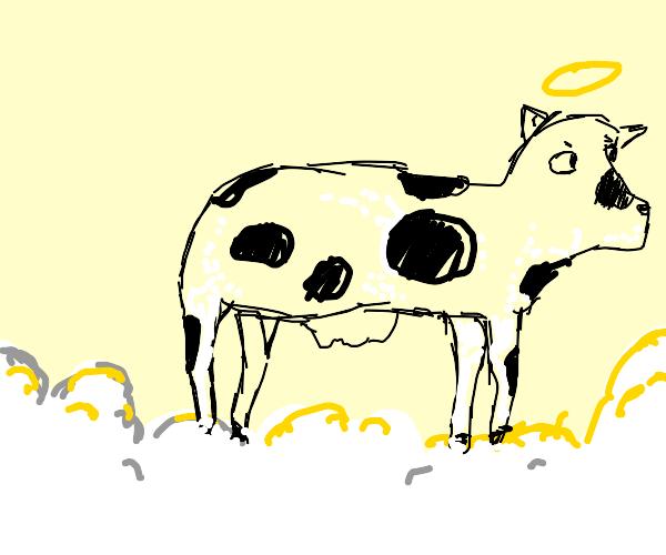 Cow in heaven