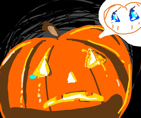 Pumpkin wants blue eyes, just like his friend