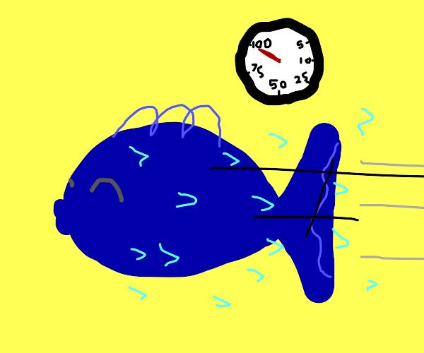 Blue fish swim fast in yellow water!