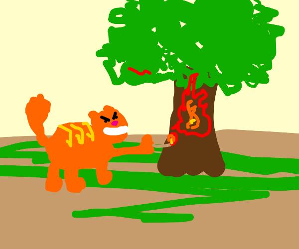 cat burning a tree