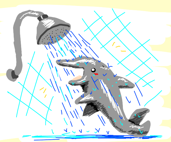 Great smiley dolphin having a shower