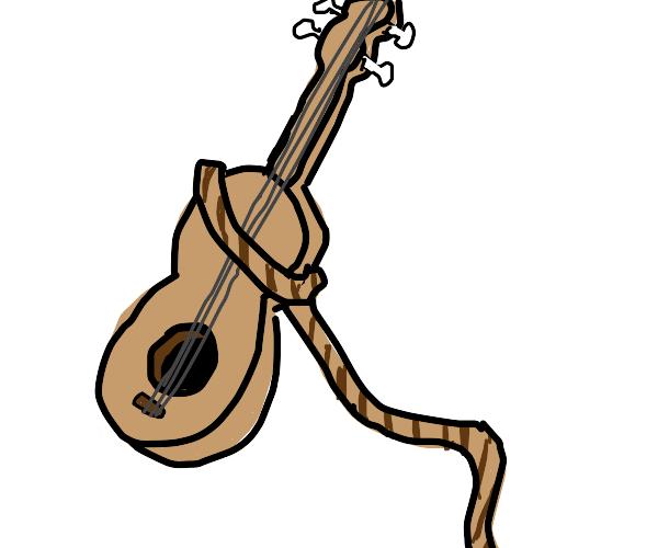 lasso that guitar!