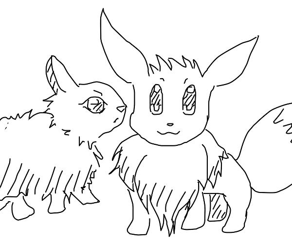 eevee and bunny