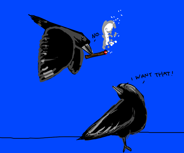 Crows fighting over cigar