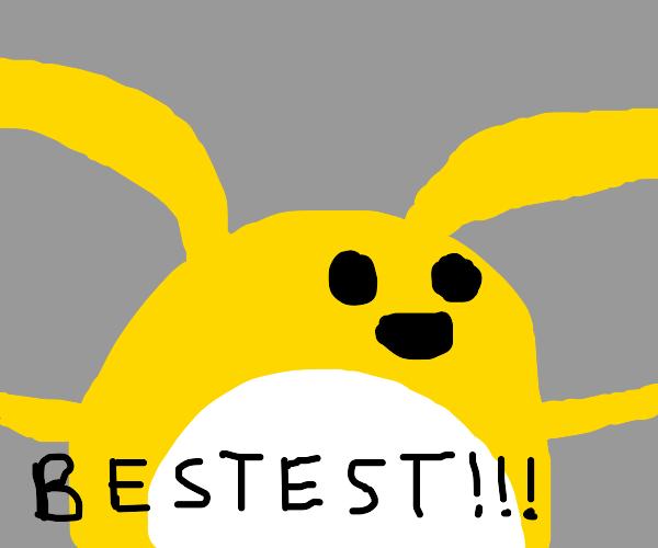 yellow rabbit is the best