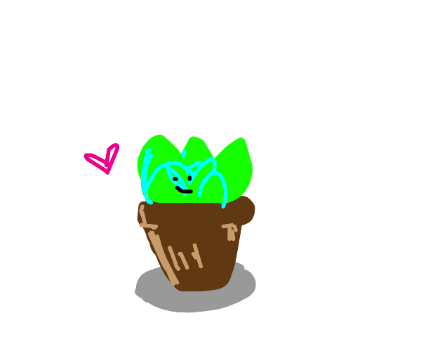 Little plant luvs u