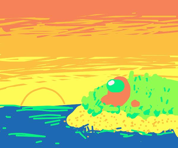 sus enjoying a tropical paradise