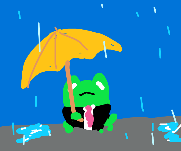 business frog is well equipped for the rain