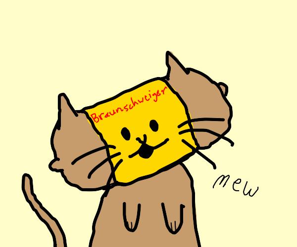 Cat made of Braunschweiger