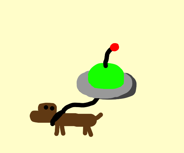 UFO walking a dog
