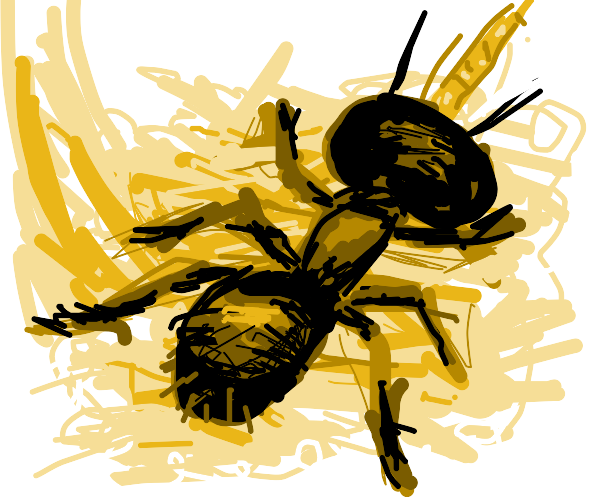 Ant with horn