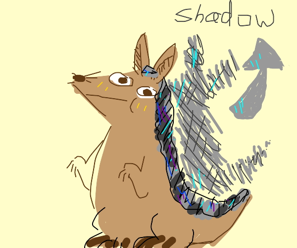 armadillo with shadow