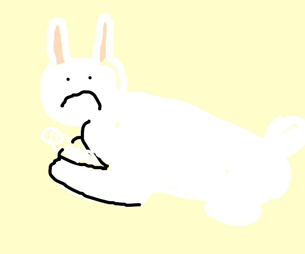 unamused rabbit with marsupial pouch