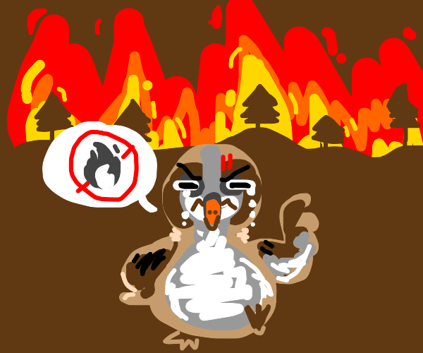 Angry sparrow upset by forest fire