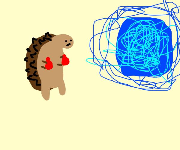 Brown hedgehog attacking a portal