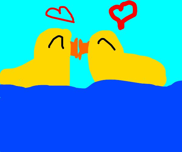 two ducks kiss