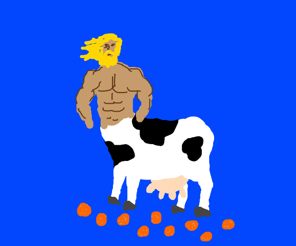 Cow with a human upper body walks on oranges