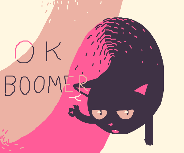 "Long cat ""ok Boomer"""