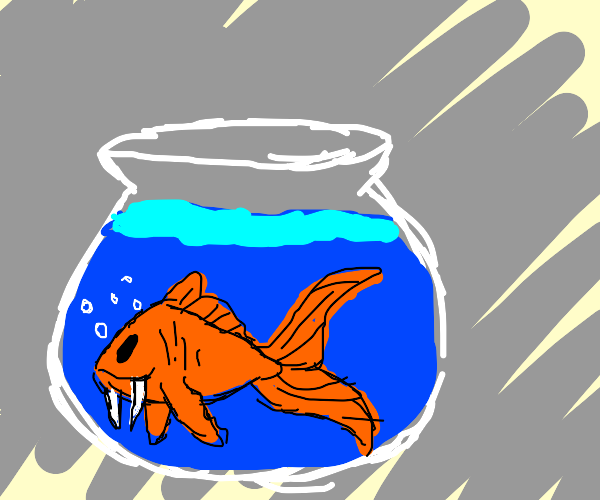 Goldfish with tusks