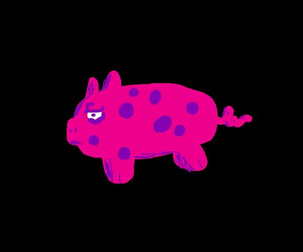 Polka dot piggy